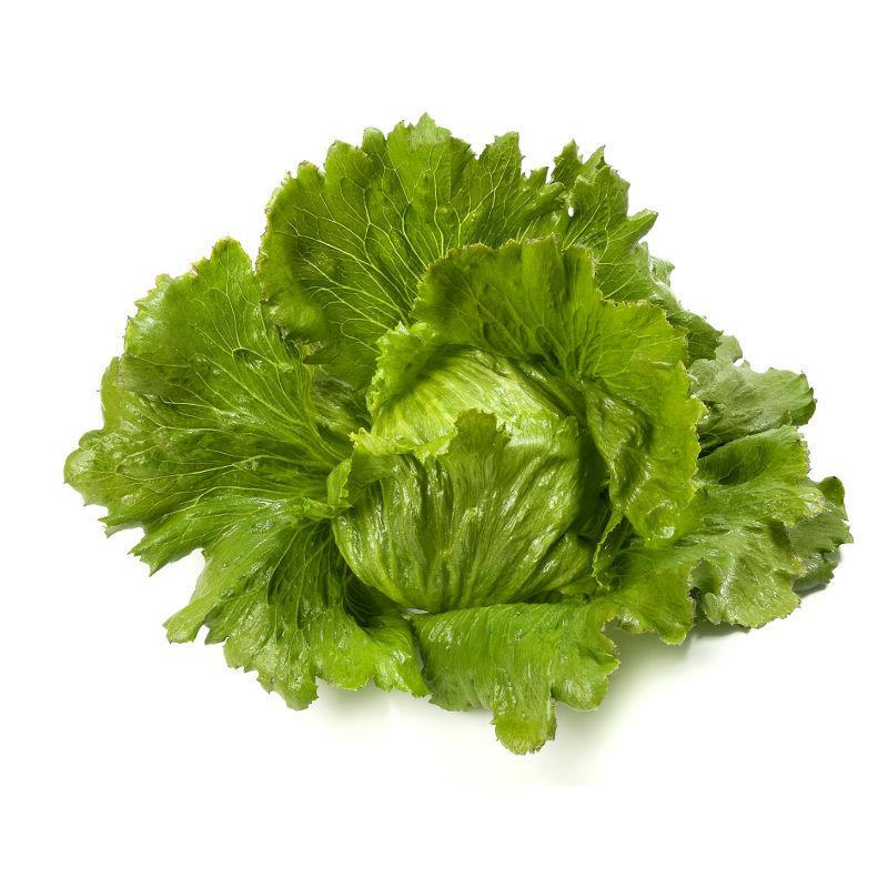comment planter des plants de salade 28 images salade en pot comment les planter 4 233. Black Bedroom Furniture Sets. Home Design Ideas
